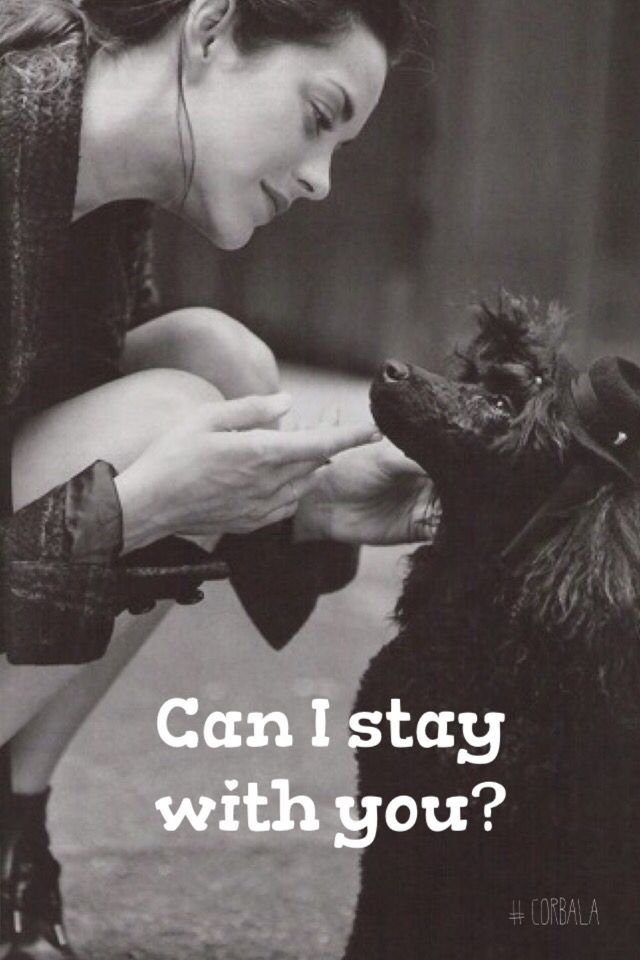 Can I stay with you?/rpin it #corbala @corbalilla