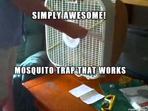 Simply Awesome An Easy And Effective Diy Mosquito Trap You Ll Love