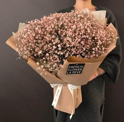 الورد الابيض الصغير