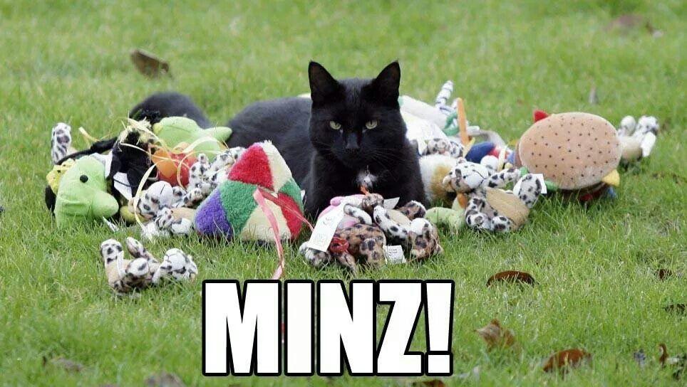 Minz.