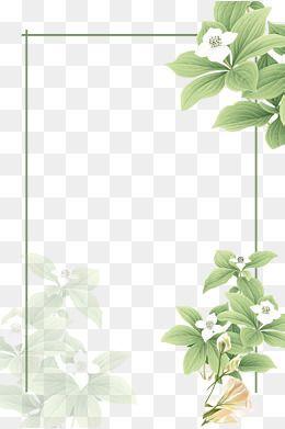 As Plantas Cartoon Plantas Moldura Imagem Png E Psd Para Download Gratuito Flower Png Images Pink Background Images Watercolor Decor