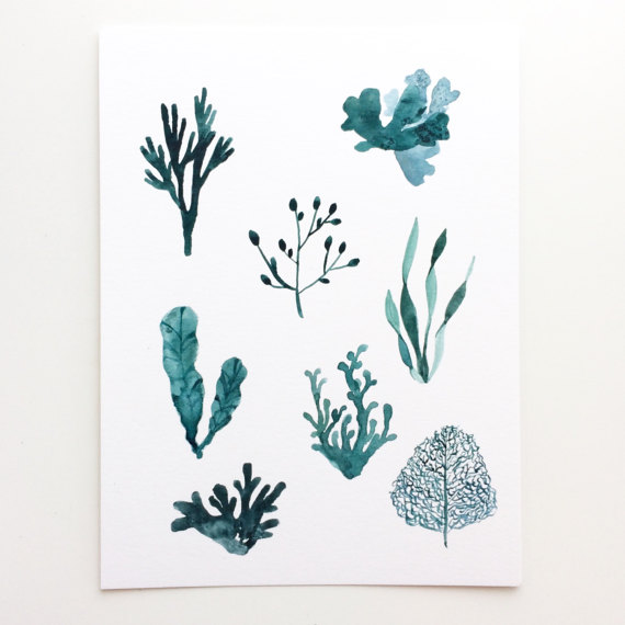 Deep Sea Blue Ocean Seaweed Original Watercolor Painting 6 X 8