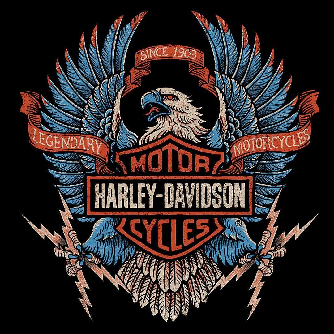 I contributed a few designs to this falls HarleyDavidson