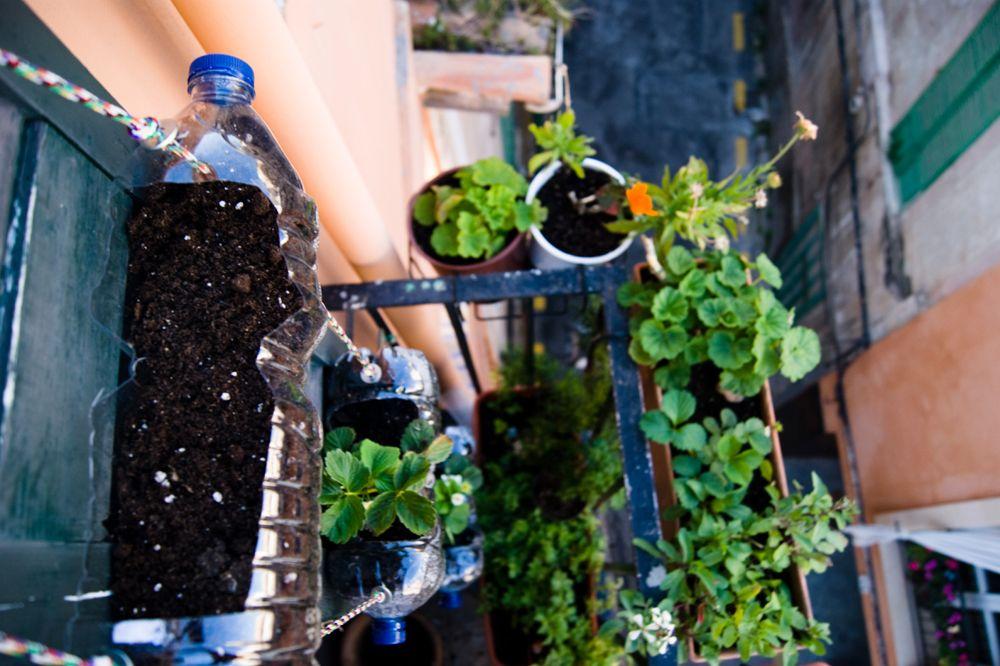 Huerto Urbano Vertical Reciclado Huertos Verticales Con Botellas Huertos Verticales Como Hacer Un Huerto