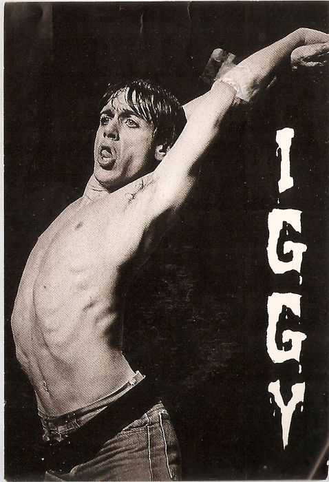 Iggy Pop  Film Music  Books  Iggy pop Iggy the