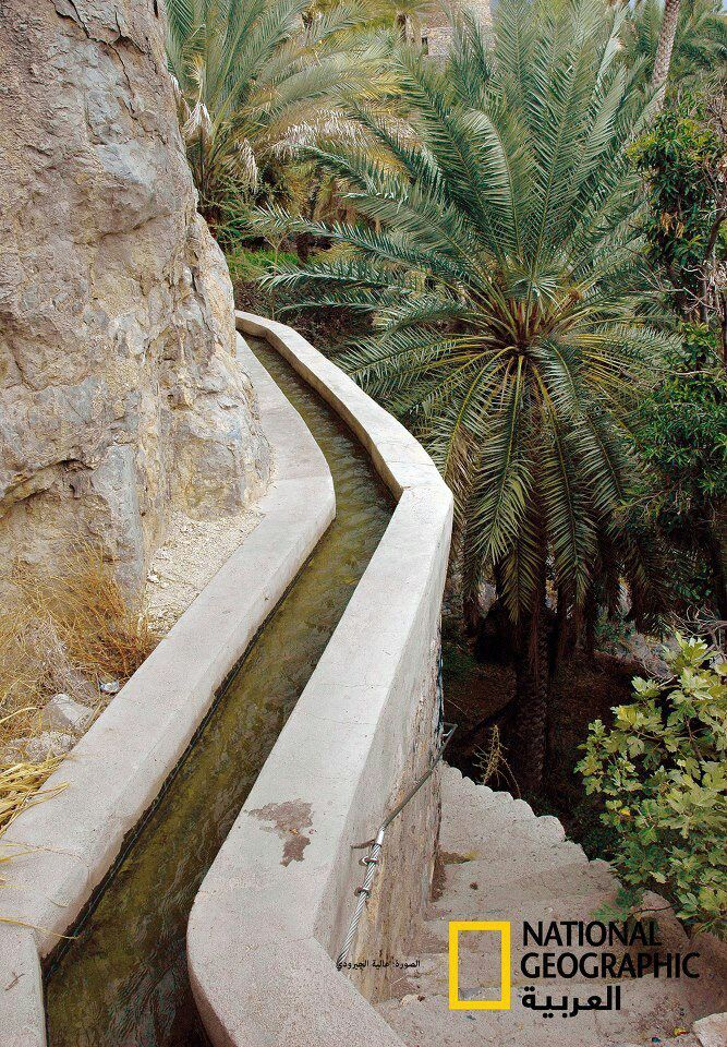 """""""The falaj is a channel of water that leads from its source, usually an underground spring, to the fields where irrigation is required."""" Oman: The Bradt Guide www.bradtguides.com"""