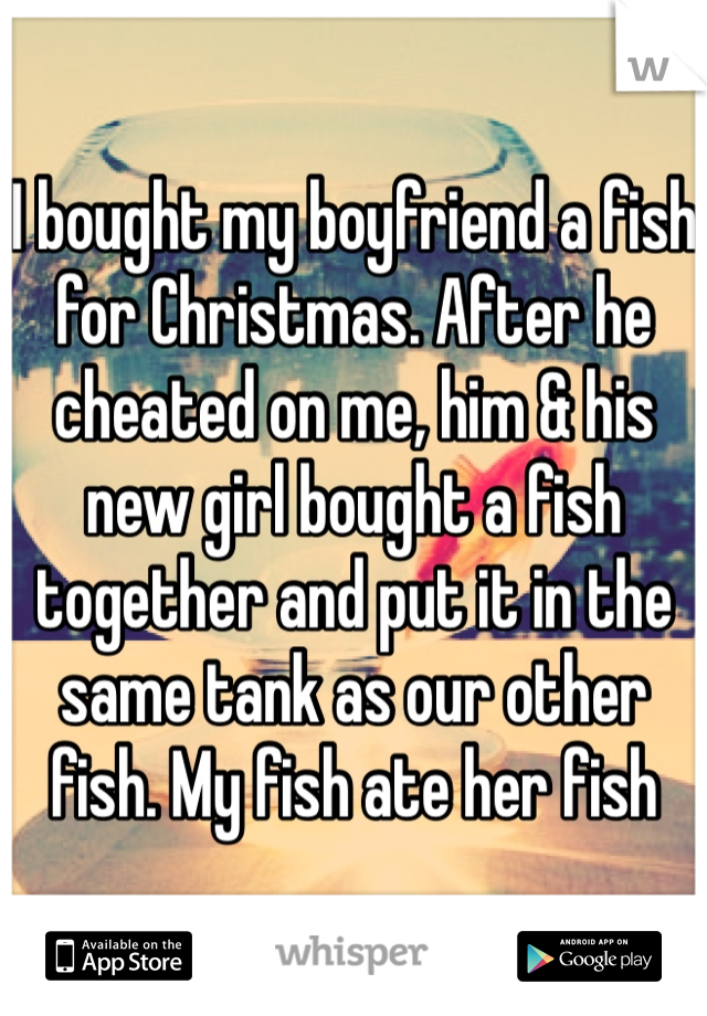 I bought my boyfriend a fish for Christmas  After he cheated