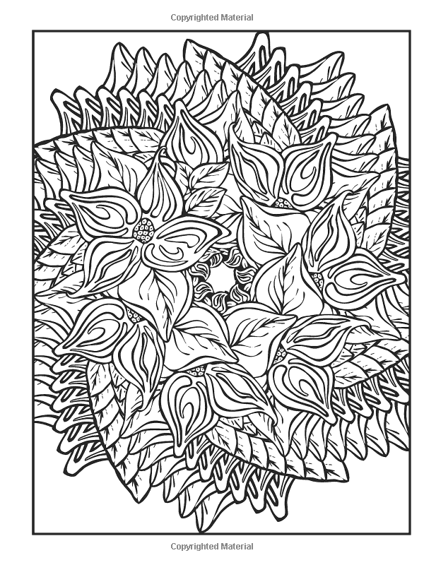 Dover Publications Creative Haven Nature Fractals Coloring Book Mary Agredo And Javier Agredo Mandala Coloring Pages Pattern Coloring Pages Coloring Books