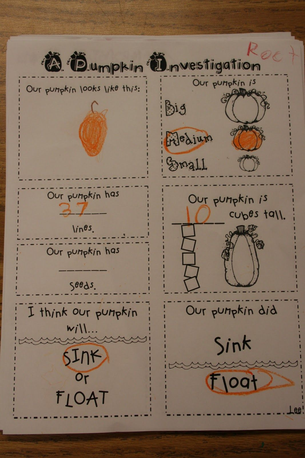 Mrs Lee S Kindergarten Pumpkins