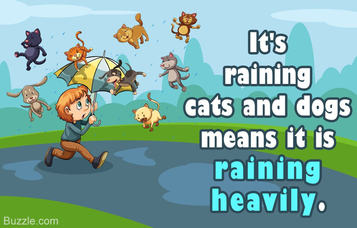 True Meaning and Origin of the Idiom 'It's Raining Cats