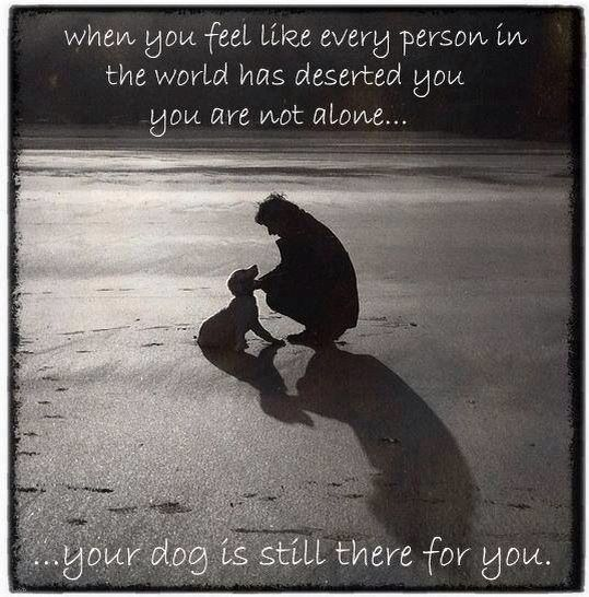 Quotes About A Girl And Her Dog My Dog Is Always There For Me Dogsblue Heeler  Pinterest  Dog .