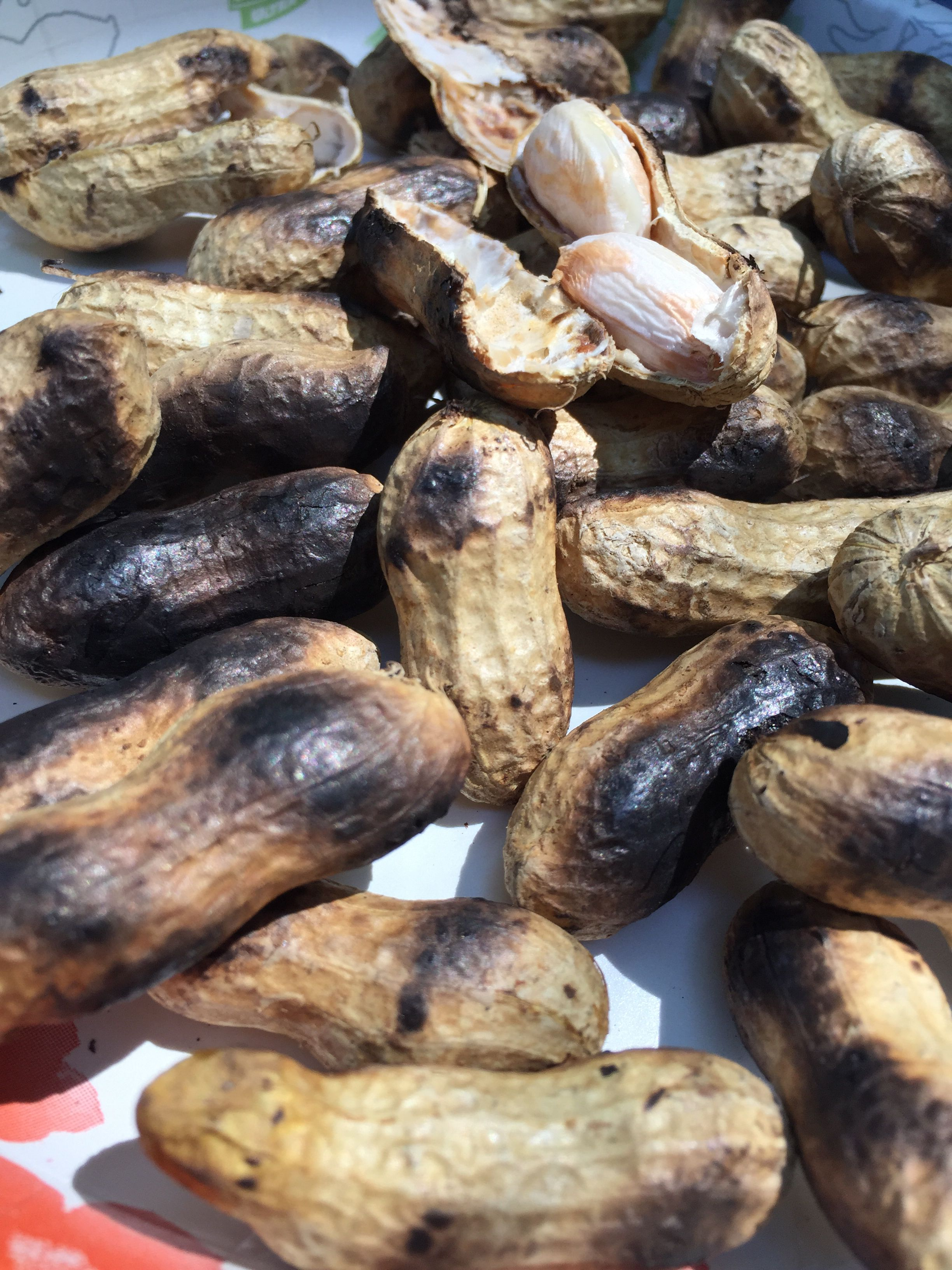 Roasted green peanuts in shell.!