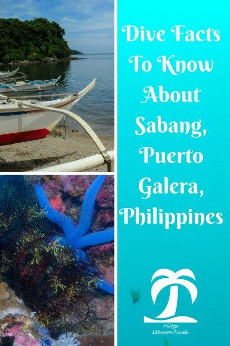 Philippines Dive Magazine: Scuba Diving Sabang, Puerto Galera....Philippines