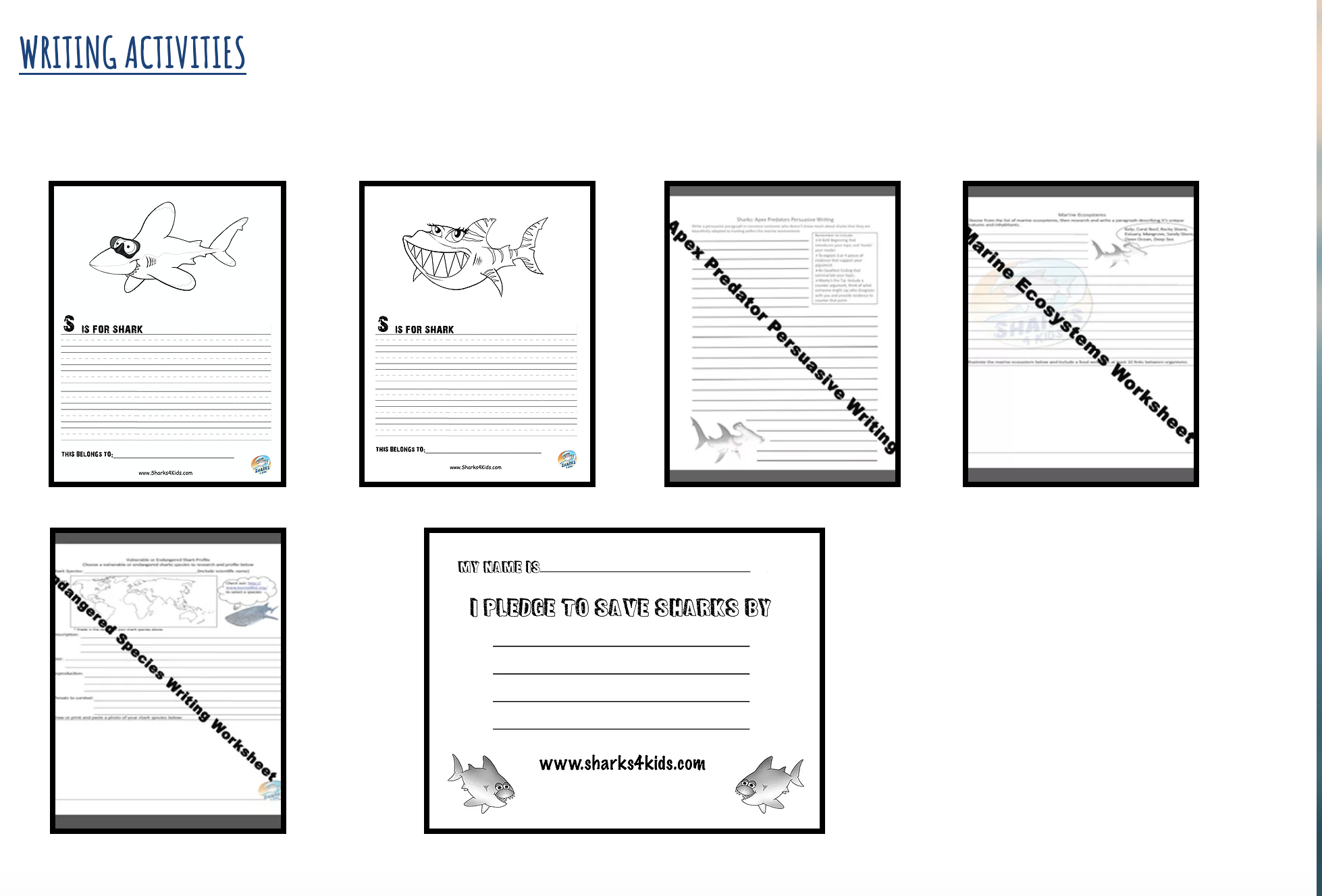 Dive In With A Wide Variety Of Shark Based Writing