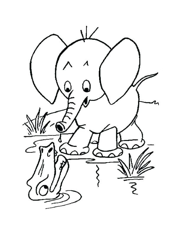 Baby Elephant Coloring Page Baby Elephant Color Pages Baby ...