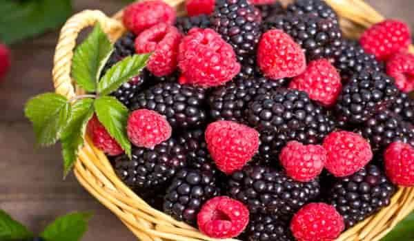 فوائد توت العليق العشرة تعرف عليها In 2020 Food Fruit Eatme