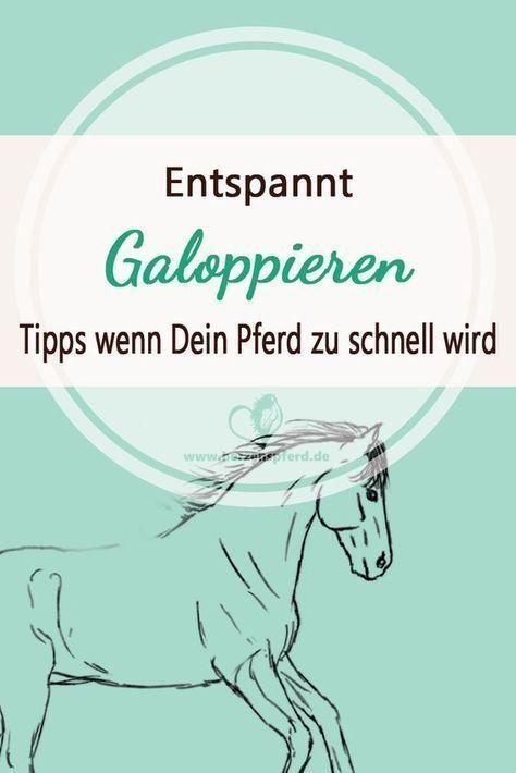 Entspannt Galoppieren – das kannst Du tun wenn Dein Pferd zu schnell wird! #beau…