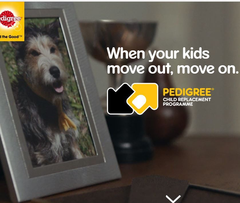 When Your Kids Move Out Move On Pedigree Child Replacement Programme Clever Marketing Campaign To Get Pets Adopted Kids Moves Pet Adoption Adoptive Parents