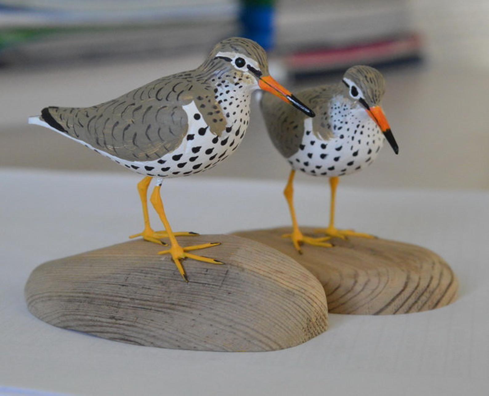 Spotted Sandpiper Shorebird Sculpture Actitis Macularius Etsy Sandpiper Wooden Figurines Shorebirds