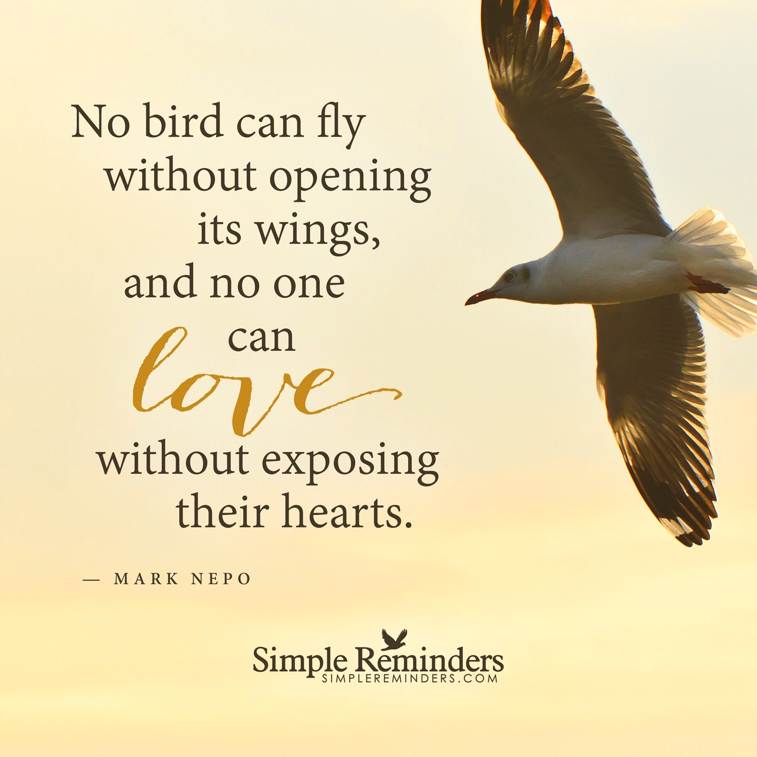 Open Your Heart By Mark Nepo Love Birds Quotes Open Your Heart Quote Heart Quotes