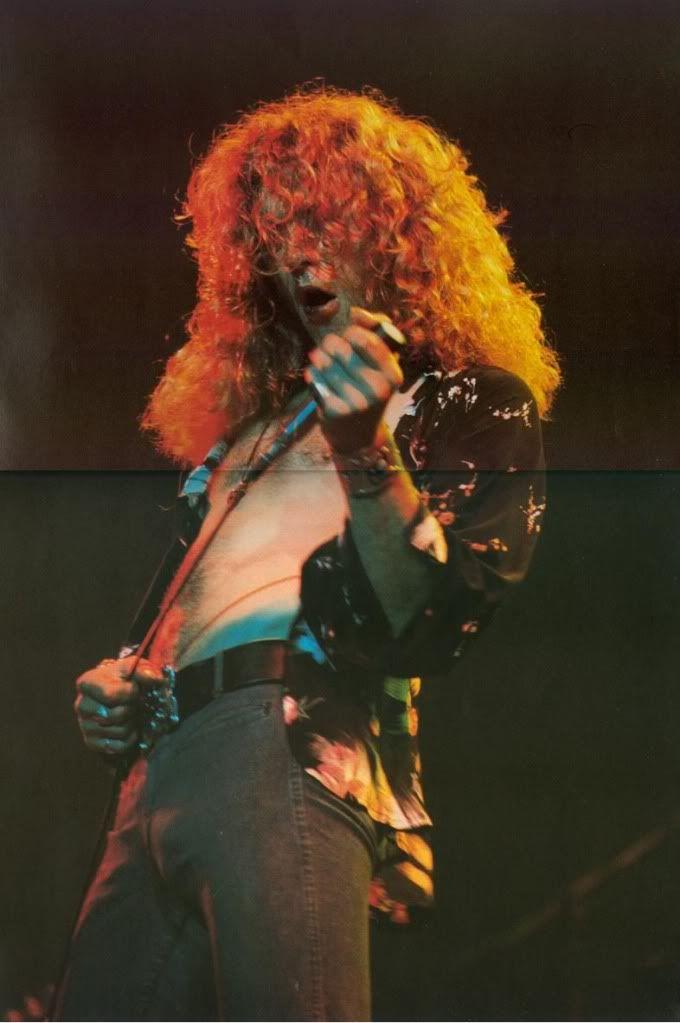 Robert Plant 75 *