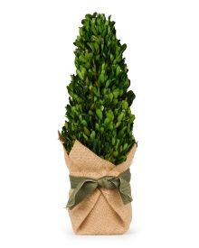 """Artificial Burlap Potted Cone Topiary 16.5"""""""