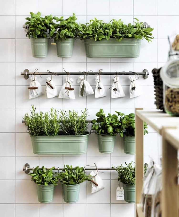 57 Kitchen Wall Decor Ideas Home Ideas Review In 2020 Herb Garden In Kitchen Kitchen Plants Diy Herb Garden