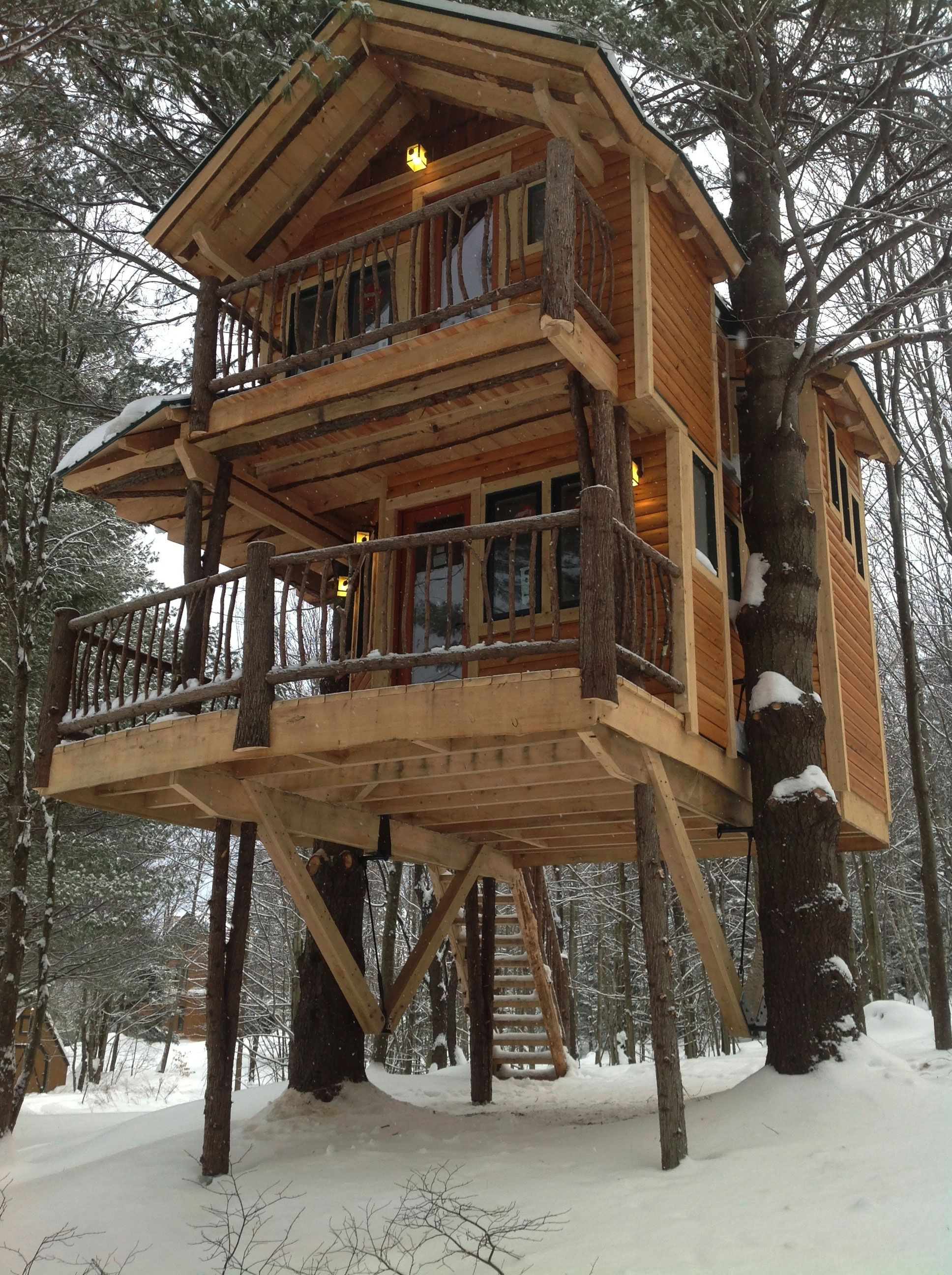 Vermont s newest gay owned b b is a tree house moose for Free treehouse plans