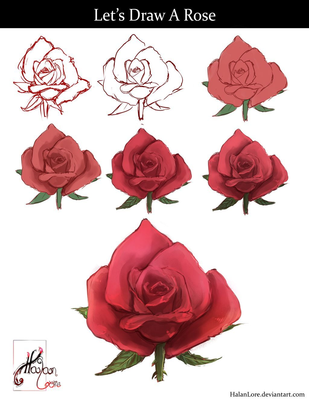 Let S Draw A Rose By Halanlore Rose Drawing Simple Rose Sketch Rose Drawing