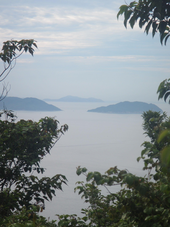 DA NANG Son Tra peninsula