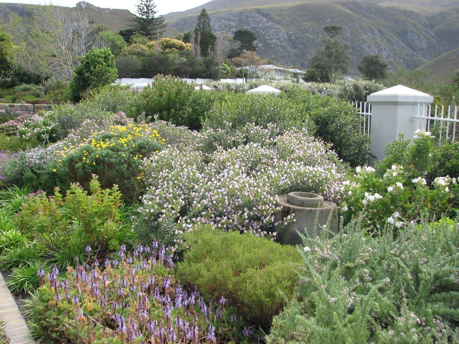 fynbos country cottage garden style Cottage garden