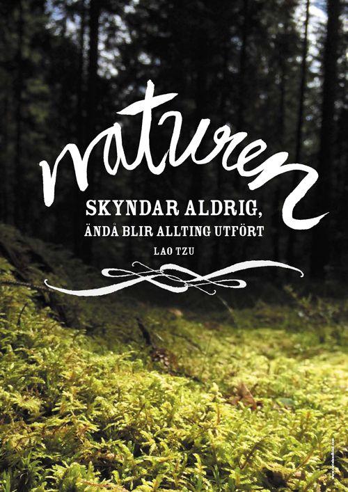 Posters Med Kloka Ord Ord Sanningar Natur