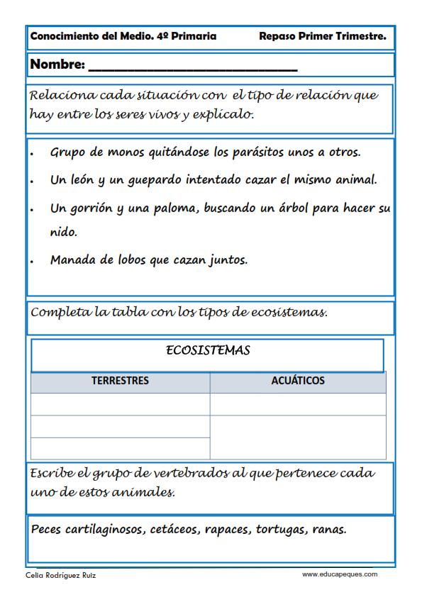 Fichas Conocimiento del Medio Cuarto de Primaria | Conocimiento, El ...