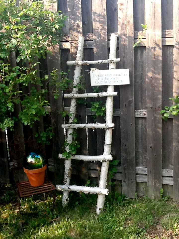 Made A Ladder Out Of Fallen Birchwood Branches A Nice