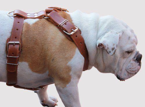 Dog Training Rewards Inner Secrets Dog Products We Love Group