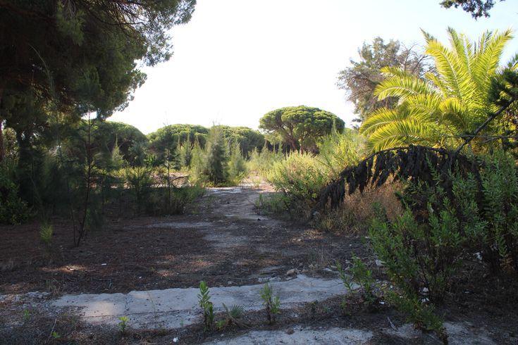 lugares en un estado de abandono en la Bahía de Cádiz