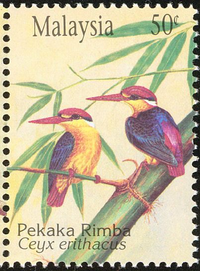 Oriental Dwarf Kingfisher stamps - mainly images - gallery format