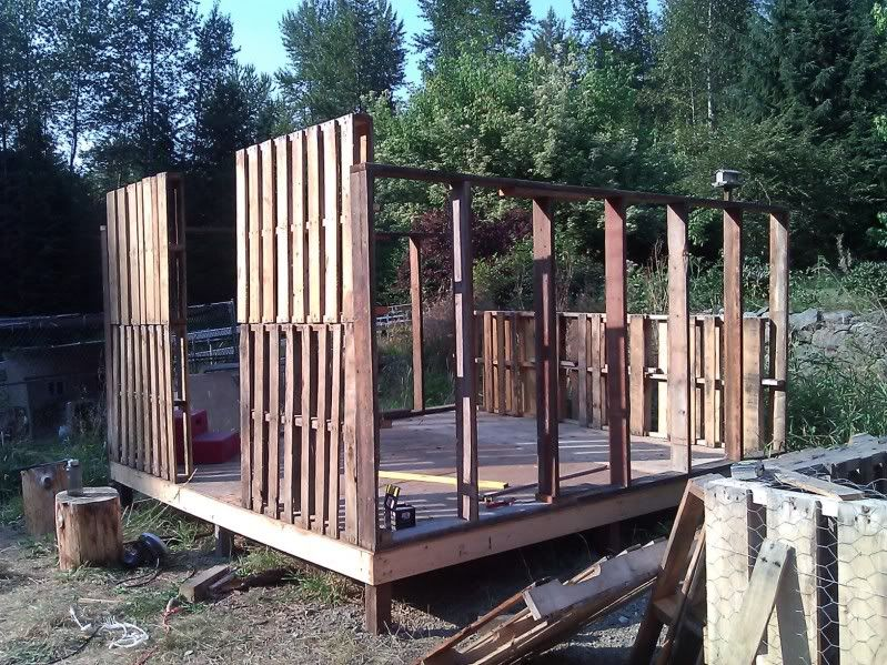 the never ending memorial weekend coop project updated pallet creations pinterest holz. Black Bedroom Furniture Sets. Home Design Ideas