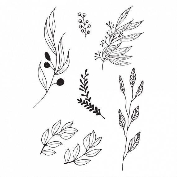 Download Black Twigs Flash Tattoo / Olives on Branch with Leaves ...