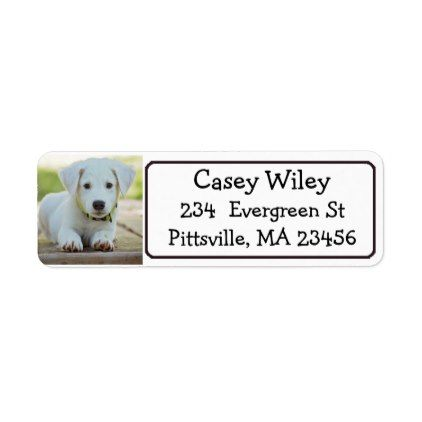 personalized pet or dog address label return address labels label