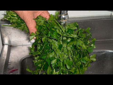 Only spray PARSLEY at the entrance of your house, the results will be immediate and surprising! - YouTube