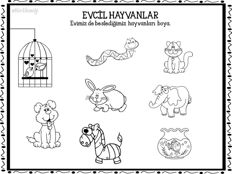 Evcil Hayvan Boyama Sayfasi Resim Cizmek