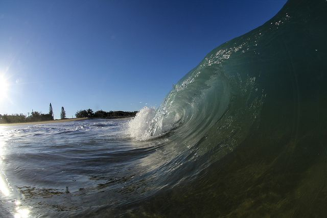 tried out my new fisheye lens in the water, went well!  Canon EOS60D, Sigma 10mm fisheye, 1/1000, ISO250, f/8, SPL Waterhousing and Port.