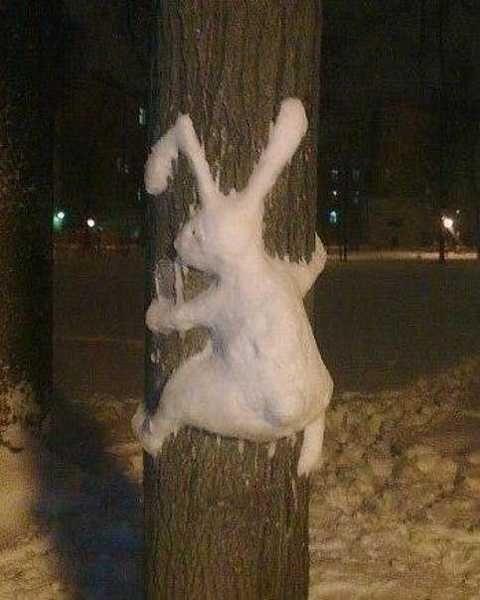 funny bunny freaky ways to make snow animals  4a45737fe7