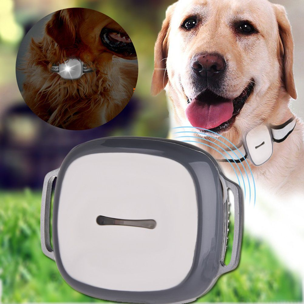 Awhao Pet GPS Tracker Small Pet Dog Cat Collars Waterproof