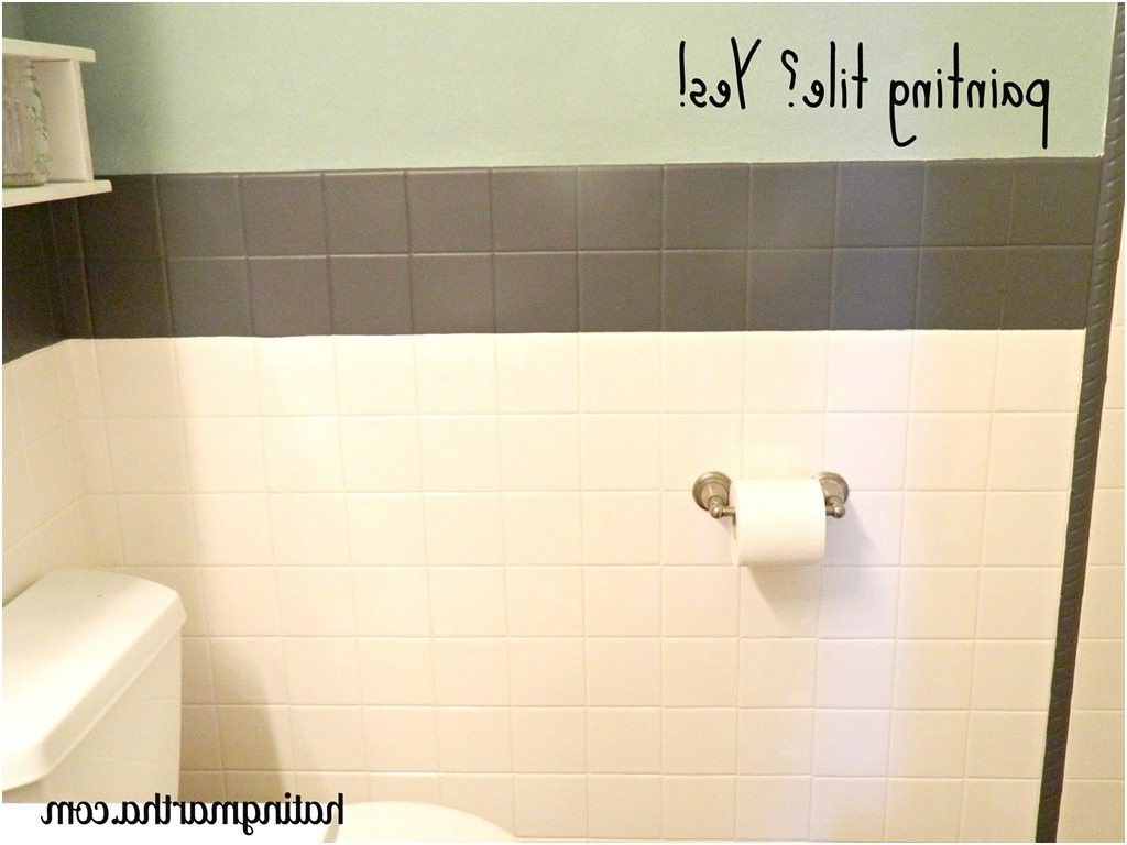 awesome Lovely Can I Paint Tile In My Bathroom | mifd283.com | Pinterest