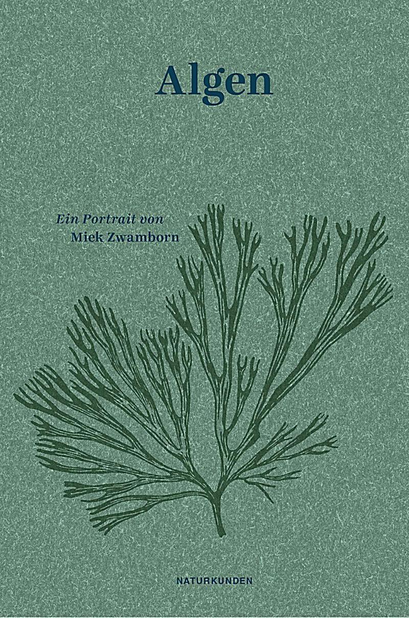 Algen. Miek Zwamborn,. Gebunden - Buch