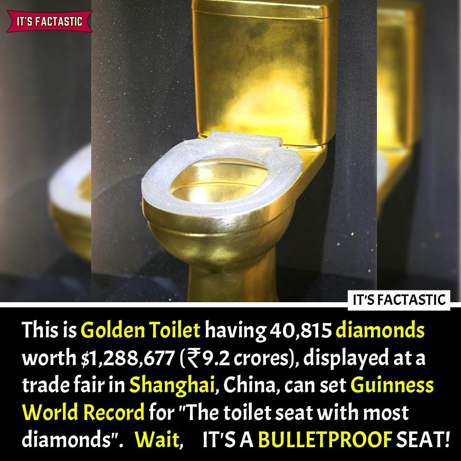 Toilet Facts Toilet Seat Guinness World Canning