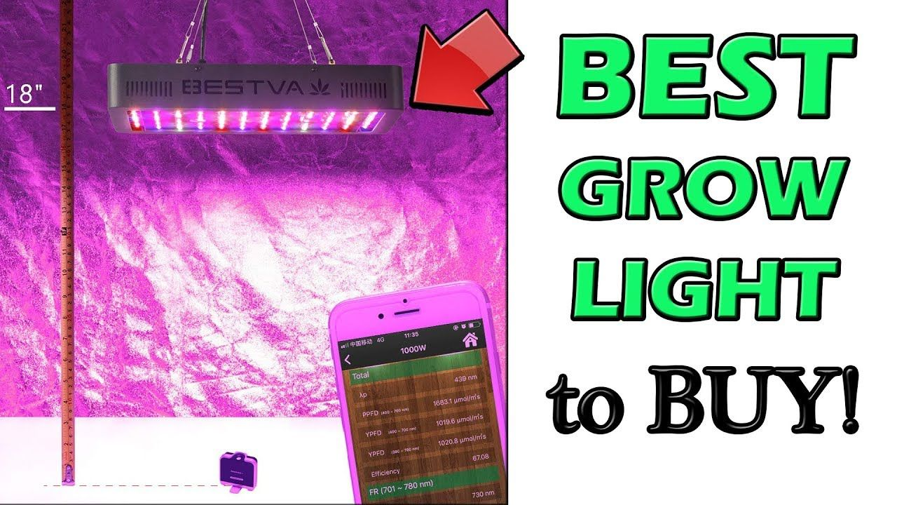Best Led Grow Lights For Vegetables Led Grow Lights 400 x 300