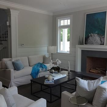 Gray Shiplap Walls Design Decor Photos Pictures Ideas Inspiration Paint Colors And Remodel Shiplap Living Room Ship Lap Walls Transitional Living Rooms